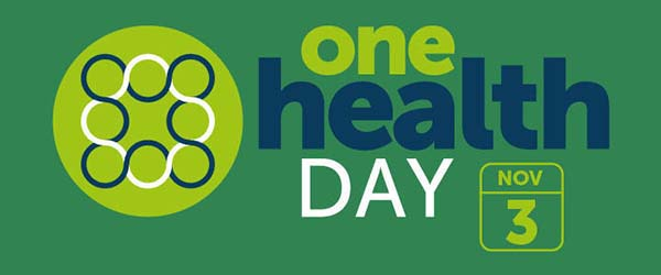 website one health day